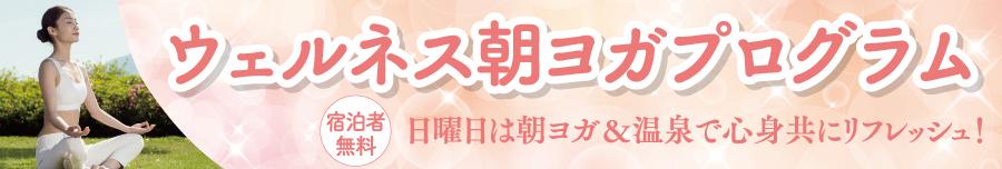 <日曜限定>ウェルネス朝ヨガプログラム