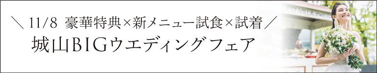 11/8_BIGウエディングフェア