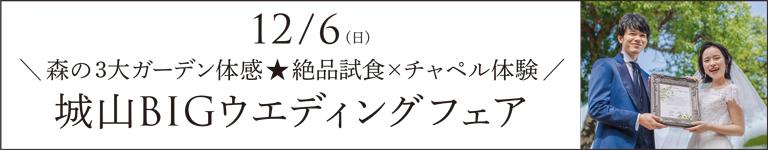 12/6_BIGウエディングフェア